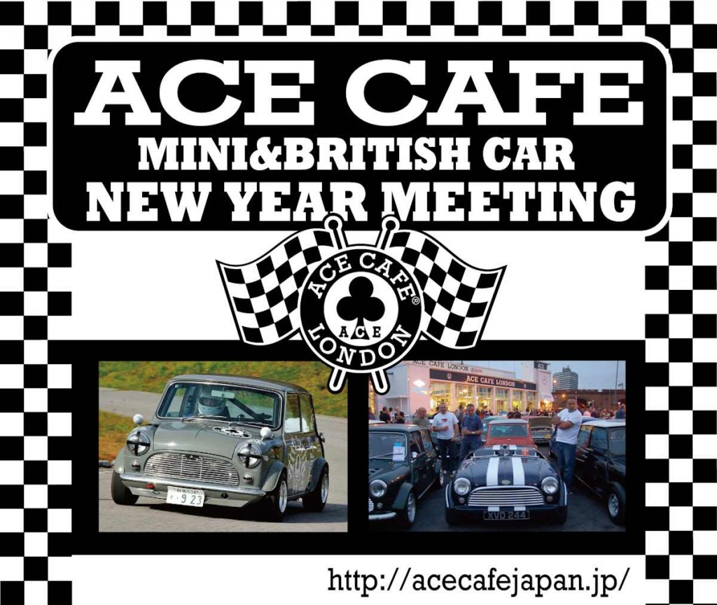 ACE MINI meeting 2016